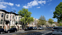 Gertrude - Limestone houses on 9th Street in Park Slope